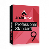 Architrave 2019 Professional Standard for 9 months